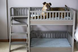 Doggie Bunk Beds Ecoflex Aspen Pet Bunk Bed New Age Pet The Best For Your Pet