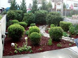 mulch alternatives design and ideas of house