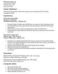 Data Entry Skills Resume Big Data Resume Lukex Co