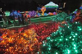 Portland Christmas Lights Zoolights Festival Portland Attractions Review 10best Experts