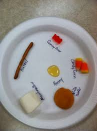 lions and tigers and bears oh my we set up a science experiment