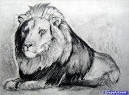 animal drawings u2013 25 free psd ai vector eps format download