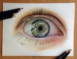 dino tomic u2013 eye color pencil drawing study feather of me