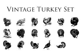 vintage thanksgiving clipart vintage turkey clipart illustrations creative market