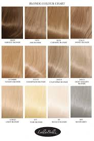 nicen easy color chart nice n easy hair color shades best hair color 2017