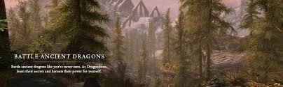 best but black friday amazon forest amazon com the elder scrolls v skyrim special edition