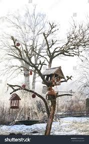 feeding birds garden winter bird tree stock photo 536595001