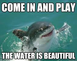 Funny Shark Memes - come in and play the water is beautiful memes pinterest