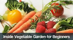 inside vegetable gardening for beginners