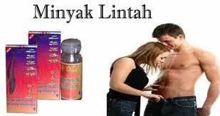 apa khasiat minyak lintah asli papua