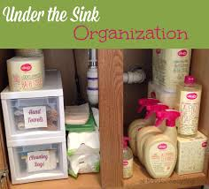 under the bathroom sink organization with ology