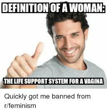 What Is The Definition Of Meme - definition of a woman the life supportsystem for a vagina quickly