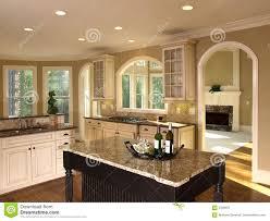 luxury kitchen royalty free stock image image 7729116