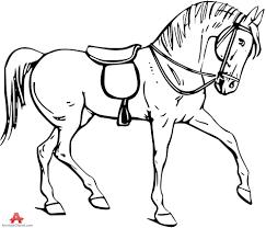 bay paint horse foal clip art robin james clip art library