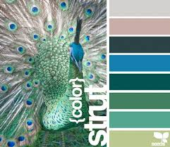 30 best teal colour scheme images on pinterest teal color