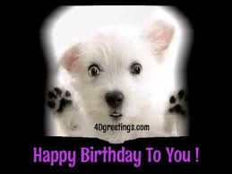 cutest dog ever singing happy birthday greeting card youtube