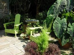 Tropical Plants For Garden - tropical plants carolyn u0027s shade gardens