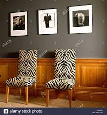 zebra print stock photos zebra print stock images alamy zebra print chairs below hanging photographs stock image