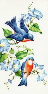 157 best bluebird of happiness images on pinterest blue bird