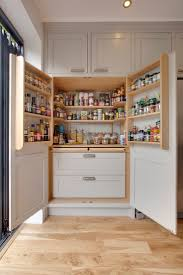 Organize Kitchen Cabinet Best 25 Kitchen Pantry Storage Cabinet Ideas On Pinterest