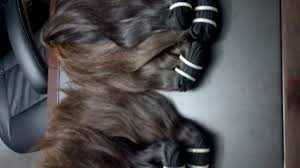Hair Extension Birmingham by 100 Hair Extensions Wholesaler Youtube
