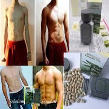 jual obat penggemuk badan pria herbal obat gemuk penambah berat