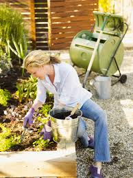 Composting Pictures by Sneaky Composting How To Use A Worm Tube In The Garden