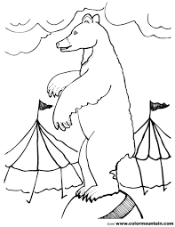 circus bear coloring sheet create a printout or activity