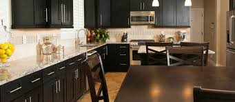 Black Shaker Kitchen Cabinets Sollid Cabinets Access Solutions