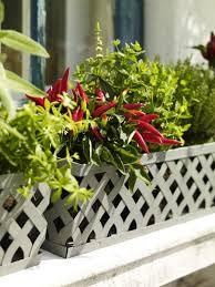 krã uter balkon chestha gemüse balkon design