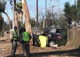 woman killed after car crashes into tree off i 805 cbs news 8