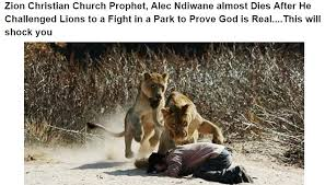 Challenge Hoax Did A Christian Prophet Challenge Lions To A Fight In The Kruger