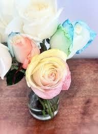 tie dye rose ericka u0027s fave things pinterest flowers