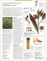encyclopedia of herbal medicine the definitive home reference