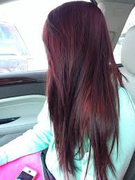 mahogany red hair with high lights best 25 dark cherry hair color ideas on pinterest black cherry