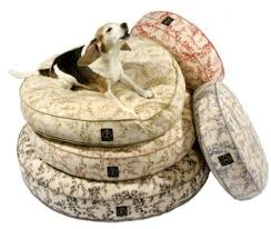 Barker Dog Bed Gone To The Dogs Mnn Mother Nature Network