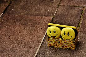 happy green color free images food green color box yellow smile laugh