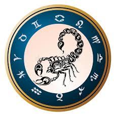 zodiac signs scorpio design stock vector illustration