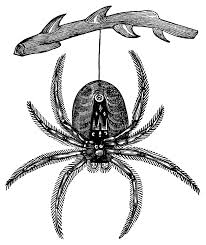 halloween graphics free clip art hanging spider free vintage halloween clip art black and white