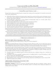 Sample Resume For Senior Management Position by External Auditor Resume Resume For Your Job Application