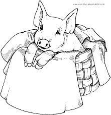 pig coloring pages preschoolers tags pig coloring pages