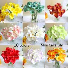 Cheapest Flowers Shop Popular Mini Calla Lilies Wholesale From China Aliexpress