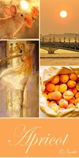 Apricot Color Více Než 25 Nejlepších Nápadů Na Pinterestu Na Téma Apricot Wedding