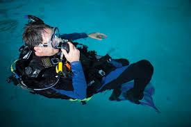 Arkansas snorkeling images The life aquatic arkansas life jpg