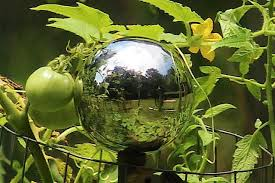 Glass Globes For Garden Gazing Ball History Hgtv