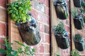 How To Plant Vertical Garden - grow fresh vegetables this winter with a diy vertical garden