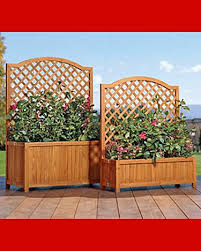 Backyard Privacy Screens Trellis 7 Best Patio Privacy Planters Images On Pinterest Gardening