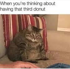 Donut Meme - when you re thinking about having that third donut meme xyz