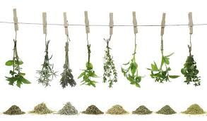 herb chart ratio chart converting fresh herbs to dry herbs to ground herbs