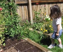 the 25 best cheap raised garden beds ideas on pinterest garden